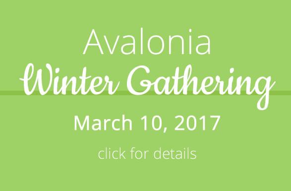 Avalonia Winter Gathering 2017