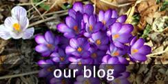 ourblogbutton