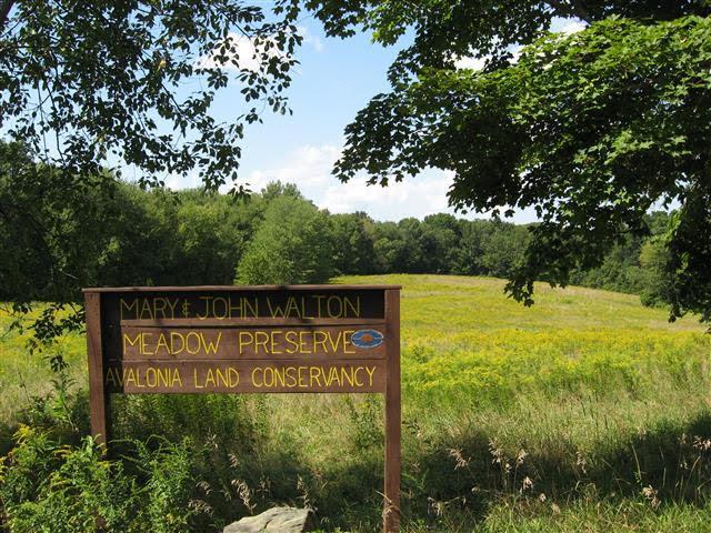 Walton Meadow Preserve Sign