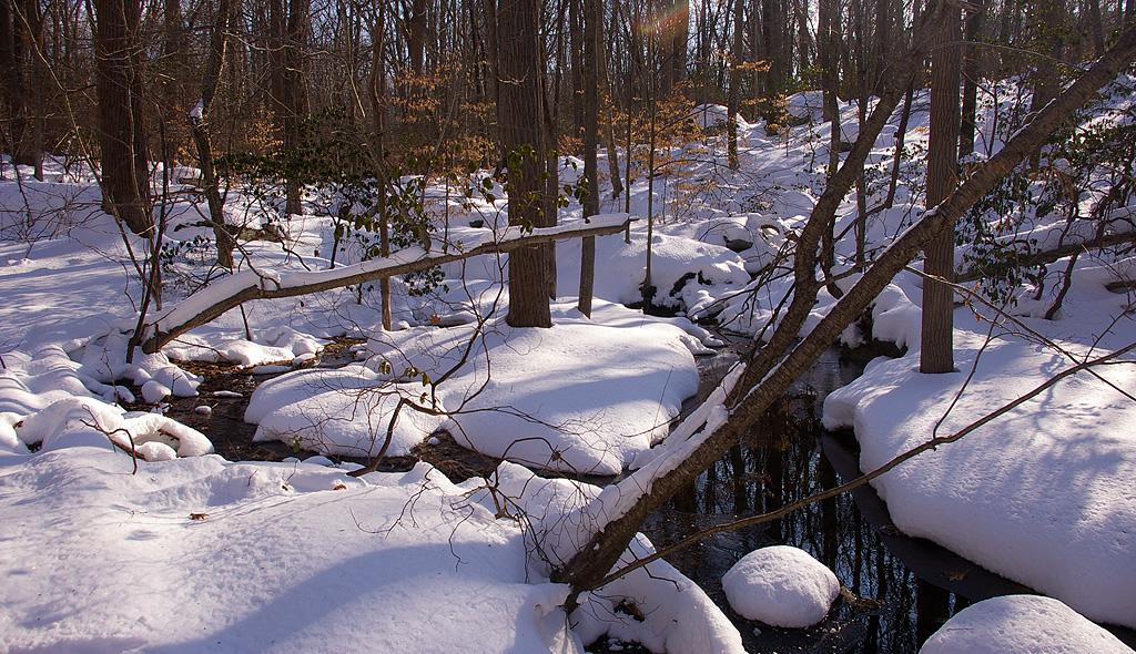 barrettpreserve-snow