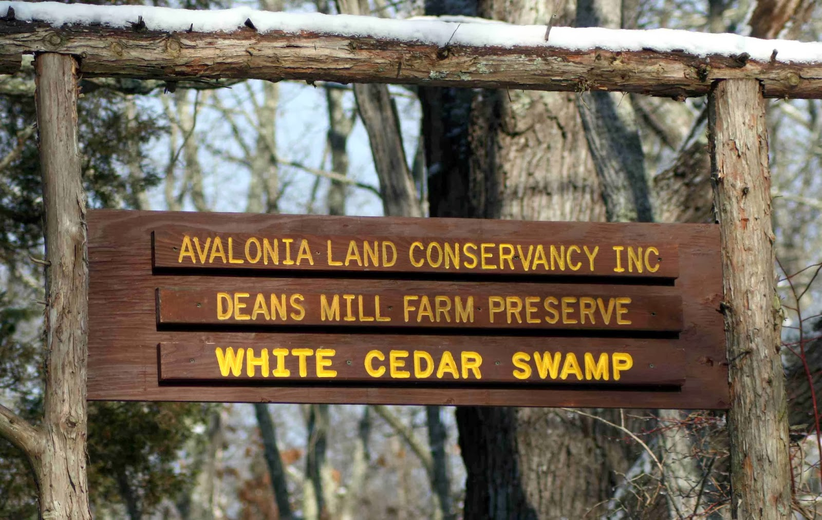 Deans Mill White Cedar Swamp Sign