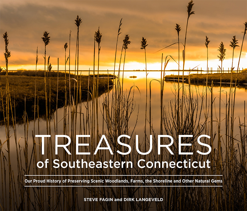 Treasures Of Southeastern Connecticut Book Features Avalonia Properties