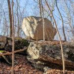 Avalonia Land Conservancy Aquires 41.5 Acres In Groton