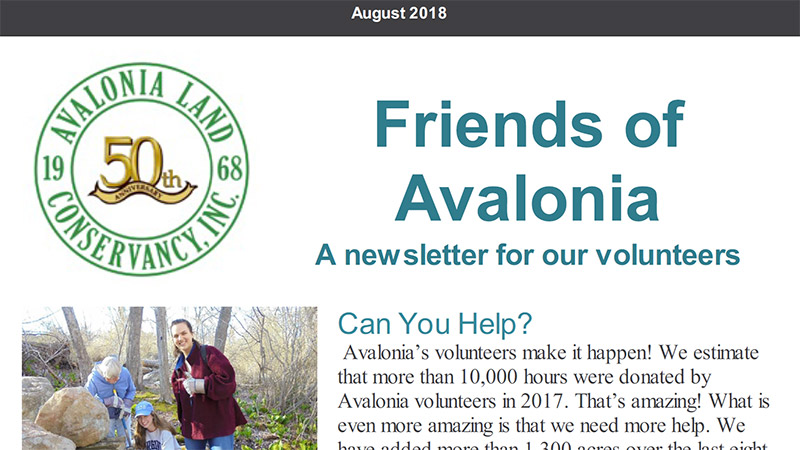 Volunteer Newsletter: August 2018