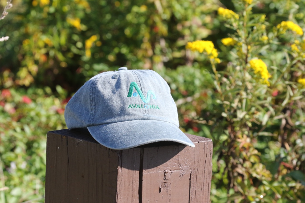 Limited Time! Avalonia Hats For Sale